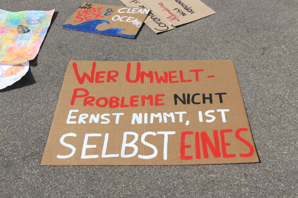 Fridays for Future veranstaltet größte Online-Demonstration der Geschichte