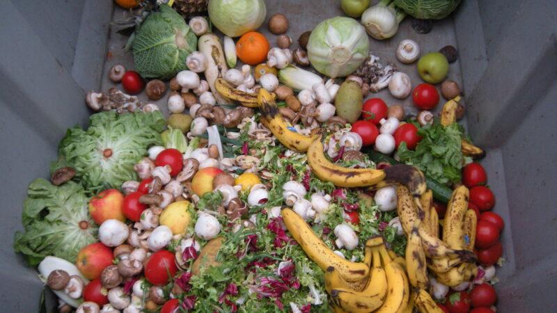 Tag der Lebensmittelverschwendung